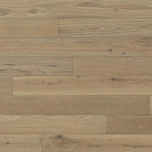 Aspen Plank Denver
