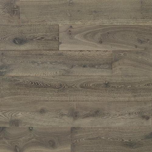Judson Plank Major Oak