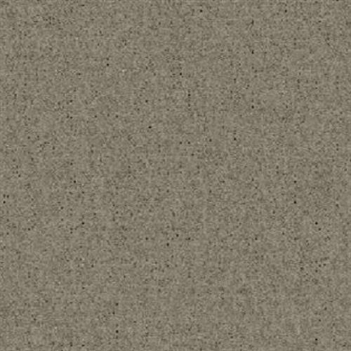 Affluent Solids in Earl Grey - Carpet by Kane Carpet