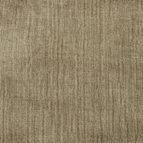Rajistan Limpet Shell 4010