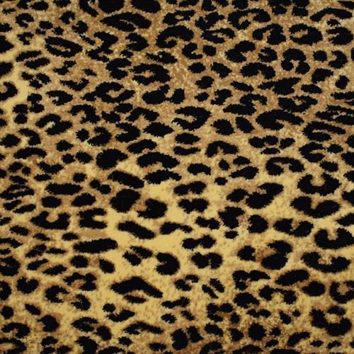 Kaplani Agile Cheetah 4401