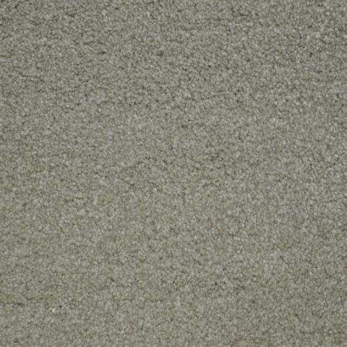 Stainmaster Petprotect - Terrier London Beige 17061