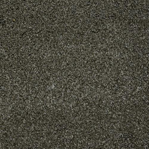 Stainmaster Petprotect - Terrier Benedictine Grey 86840