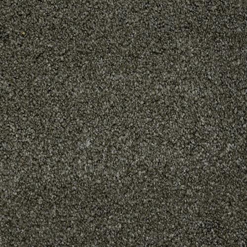 Stainmaster Petprotect - Terrier Benedictine Grey 86840