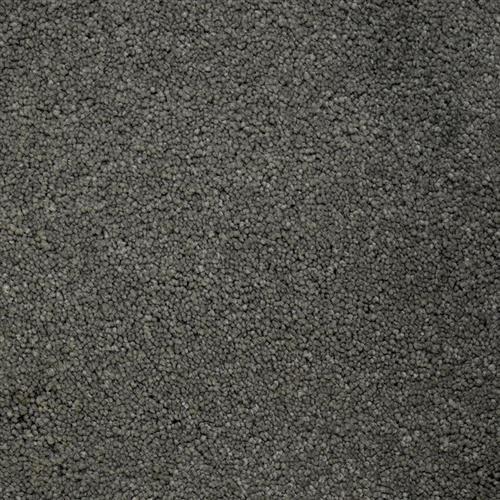 Stainmaster Petprotect - Terrier Metallic Grey 89056