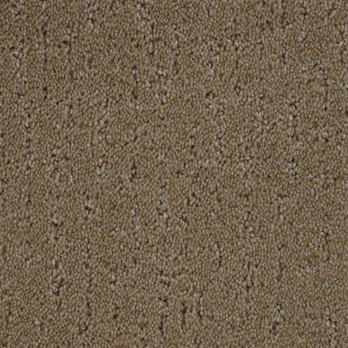 Stainmaster Petprotect - Simple Beauty Dark Straw 13742