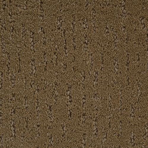 Stainmaster Petprotect - Simple Beauty Special Beige 18684