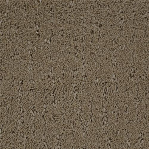 Stainmaster Petprotect - Simple Beauty Bistre Grey 74299