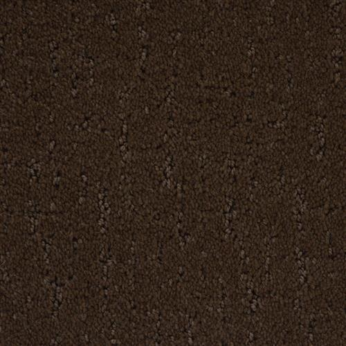 Stainmaster Petprotect - Simple Beauty Docker Brown 76797
