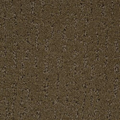 Stainmaster Petprotect - Simple Beauty Cabriolet Brown 76838