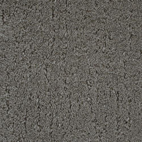 Stainmaster Petprotect - Simple Beauty North American Grey 89832