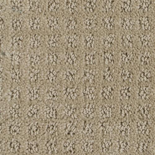 Stainmaster Petprotect - Basenji Gardenia Beige 14252