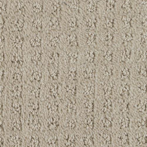 Stainmaster Petprotect - Basenji Tender Taupe 14729