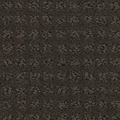 Stainmaster Petprotect - Basenji Taboo Brown 76833