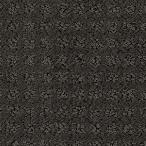 Stainmaster Petprotect - Basenji Dark Mineral Grey 84221
