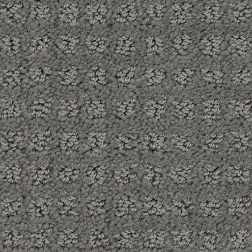Stainmaster Petprotect - Basenji Metallic Grey 89056