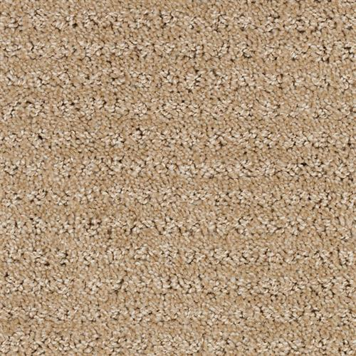Stainmaster Petprotect - Simple Elegance Dark Straw 13742