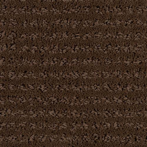 Stainmaster Petprotect - Simple Elegance Docker Brown 76797
