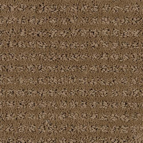 Stainmaster Petprotect - Simple Elegance Cabriolet Brown 76838