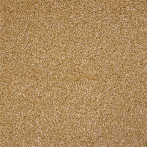 Stainmaster Petprotect - Collie Dark Straw 13742