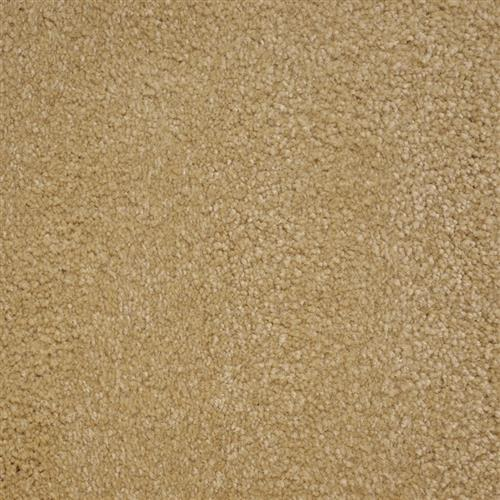 Stainmaster Petprotect - Collie Gardenia Beige 14252