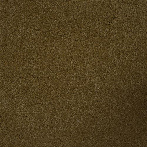 Stainmaster Petprotect - Collie Special Beige 18684