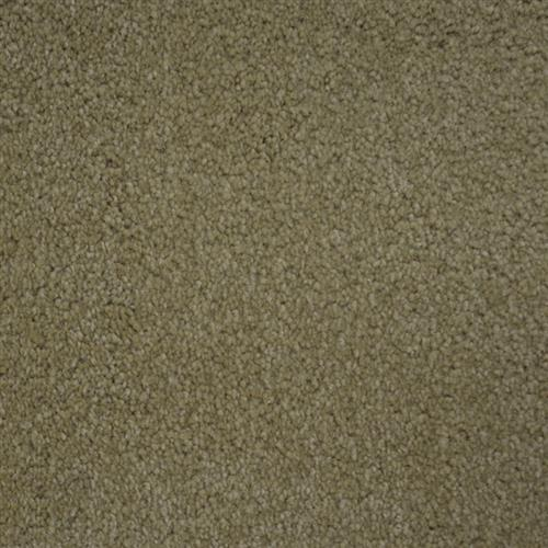 Stainmaster Petprotect - Collie Bistre Grey 74299