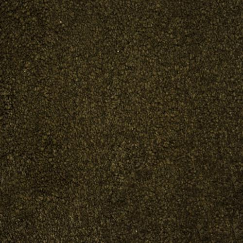 Stainmaster Petprotect - Collie Taboo Brown 76833