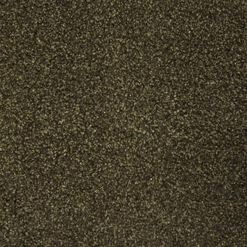 Stainmaster Petprotect - Collie Smoky Brown 77917