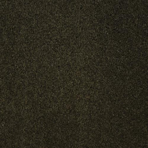 Stainmaster Petprotect - Collie Dark Mineral Grey 84221