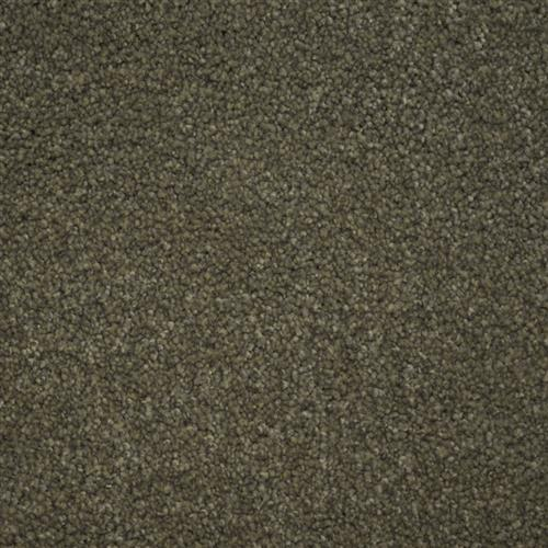 Stainmaster Petprotect - Collie North American Grey 89832