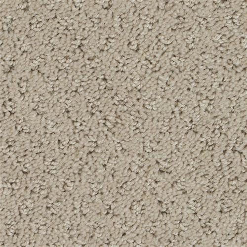 Stainmaster Petprotect - Saluki Tender Taupe 14729
