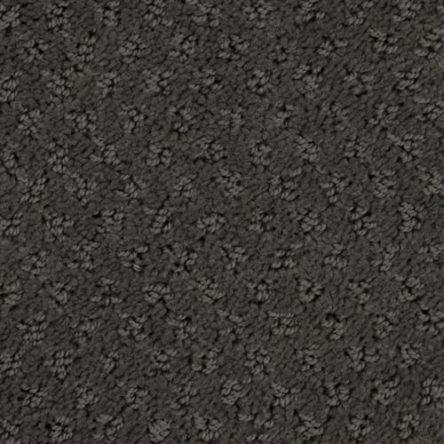 Stainmaster Petprotect - Saluki Dark Mineral Grey 84221