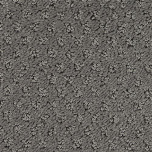 Stainmaster Petprotect - Saluki Metallic Grey 89056