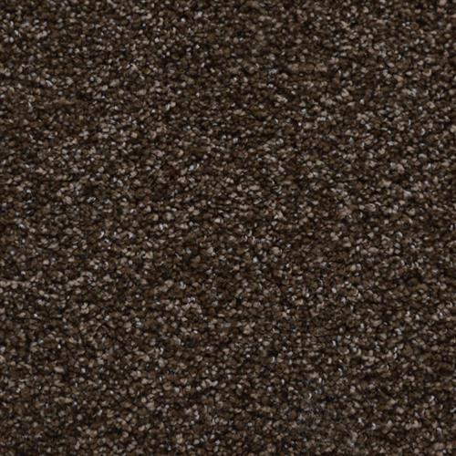 Tryesse - Radiant Touch Nutmeg 74507