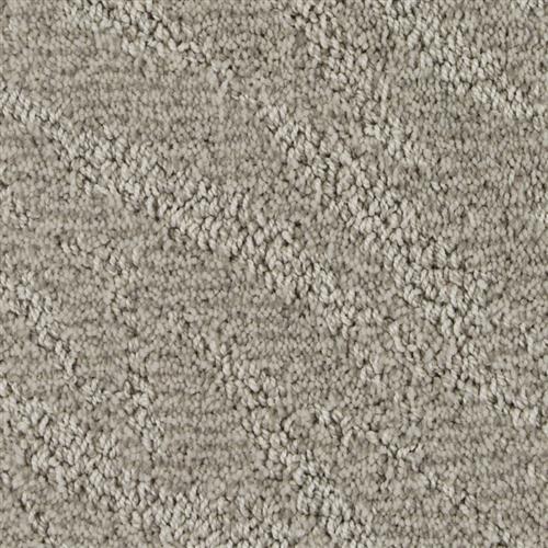 Stainmaster Petprotect - Petit Basset North American Grey 89832