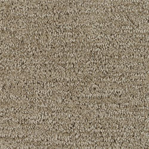 Stainmaster Petprotect - Foxhound Gardenia Beige 14252