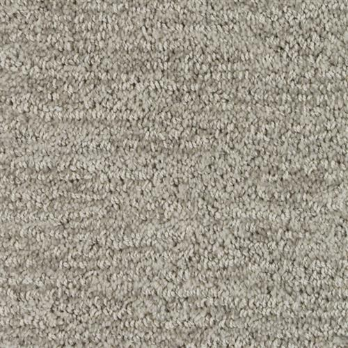 Stainmaster Petprotect - Foxhound North American Grey 89832
