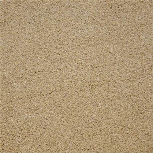 Stainmaster Petprotect - Bichon Tender Taupe 14729
