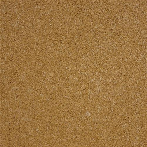 Stainmaster Petprotect - Bichon Maple Wood 17060
