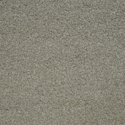 Stainmaster Petprotect - Bichon London Beige 17061