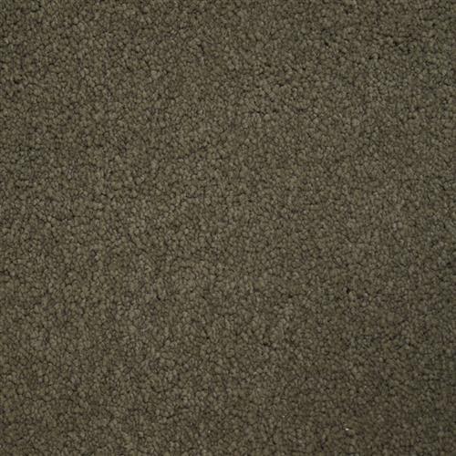 Stainmaster Petprotect - Bichon Burnt Leaf 18926