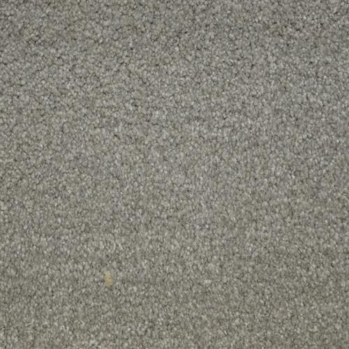 Stainmaster Petprotect - Bichon Arrowhead 84657