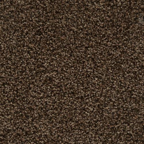 Tryesse - Olivia Rose Taupe 14504