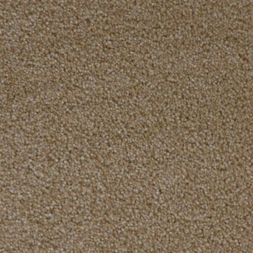 Stainmaster Petprotect - Simple Attraction Dark Straw 13742