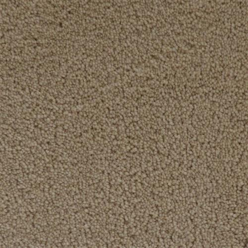 Stainmaster Petprotect - Simple Attraction Gardenia Beige 14252