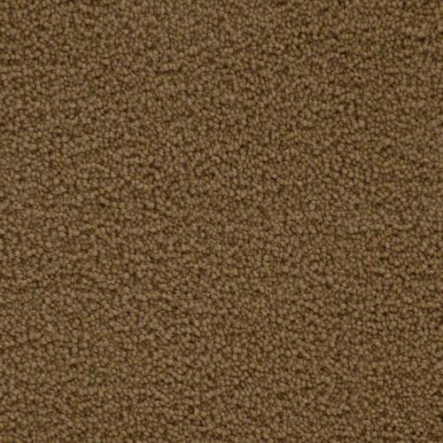Stainmaster Petprotect - Simple Attraction Special Beige 18684