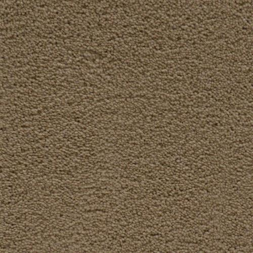 Stainmaster Petprotect - Simple Attraction Bistre Grey 74299