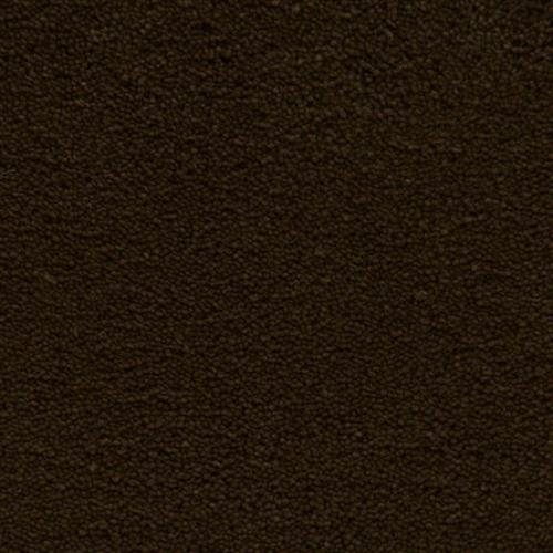 Stainmaster Petprotect - Simple Attraction Docker Brown 76797