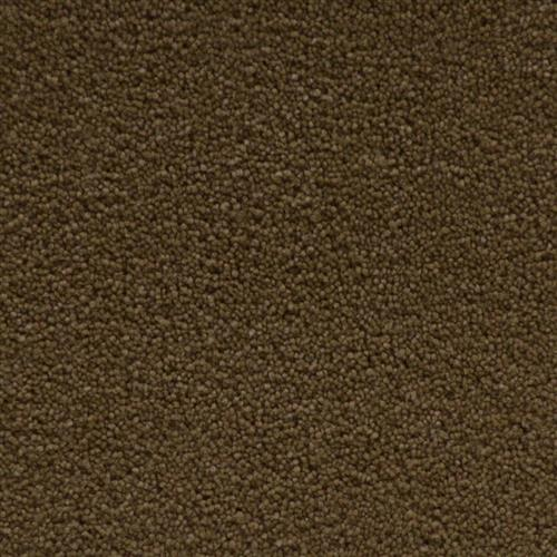 Stainmaster Petprotect - Simple Attraction Cabriolet Brown 76838